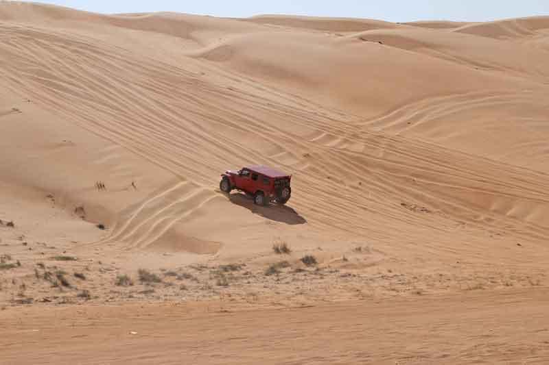 Bild 5 Fahrtraining in der Wüste