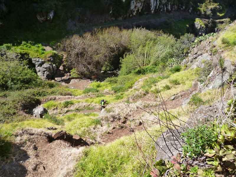 "Bild 5 Wanderung vom ""Jardim Atlantico"" aus"