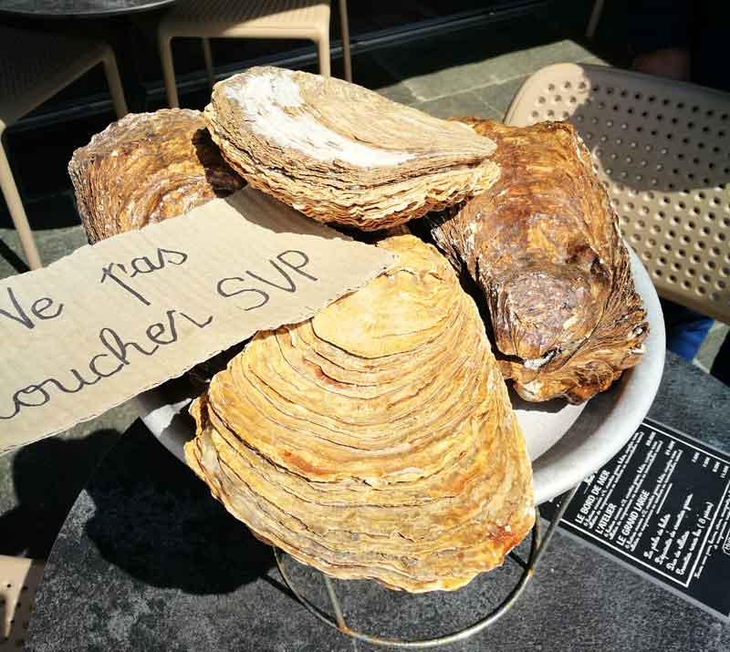 Bild 7 Austern schlemmen überall in Cancale