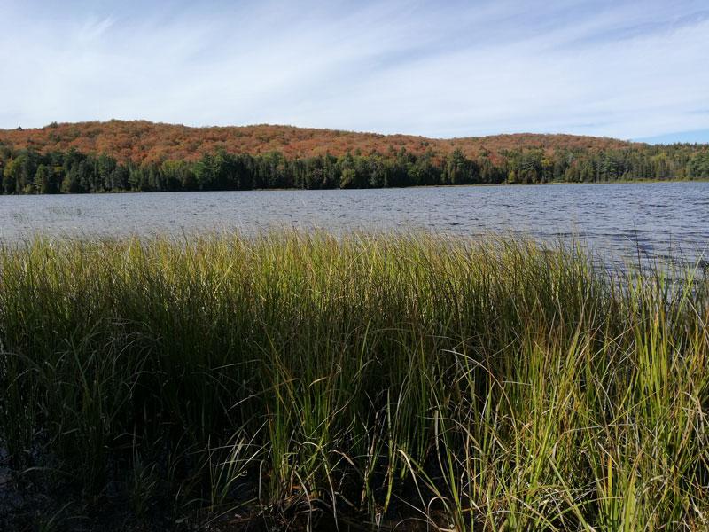 Bild 14 Wanderung zum Canisbay Lake