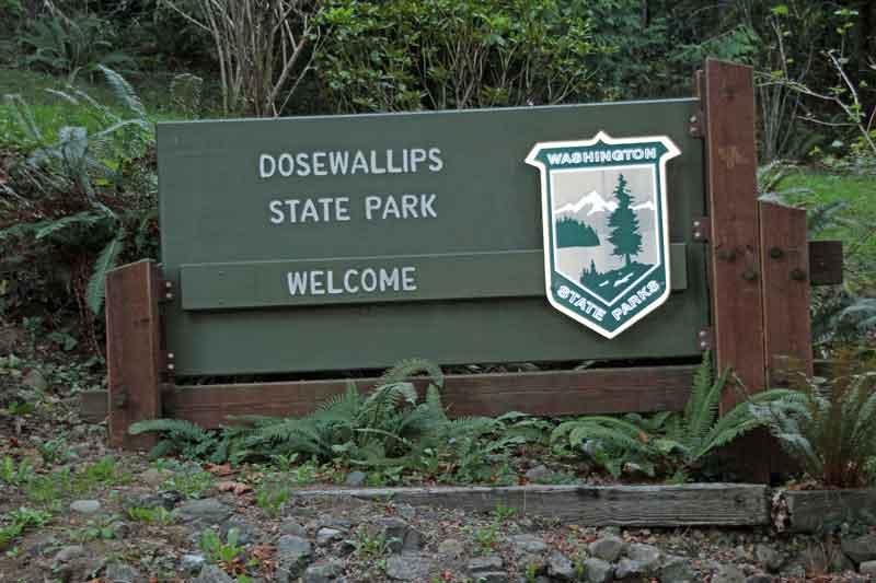 Bild 9 Das ist für heute unser Platz, der Dosewallip State Park Campground