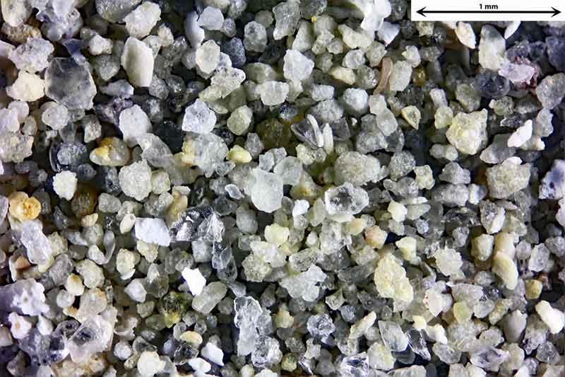 Bild 2 Sand aus Wendelsheim mit fossilen Foraminiferen