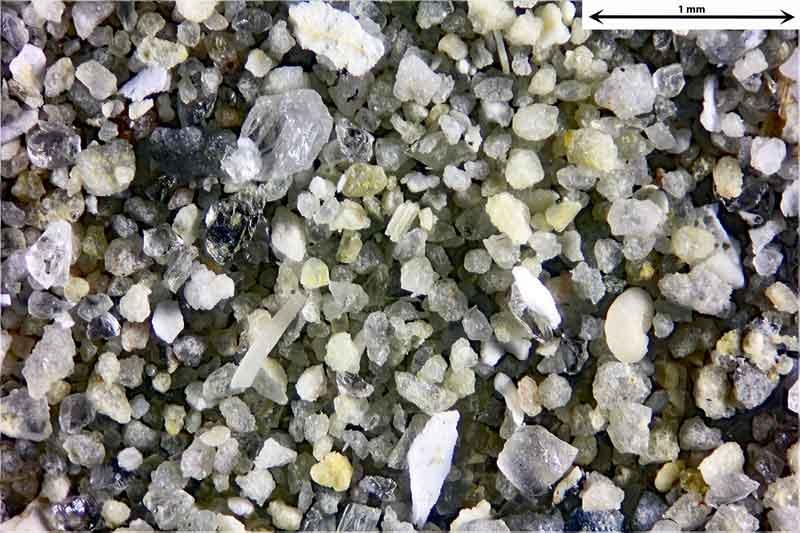 Bild 3 Sand aus Wendelsheim mit fossilen Foraminiferen