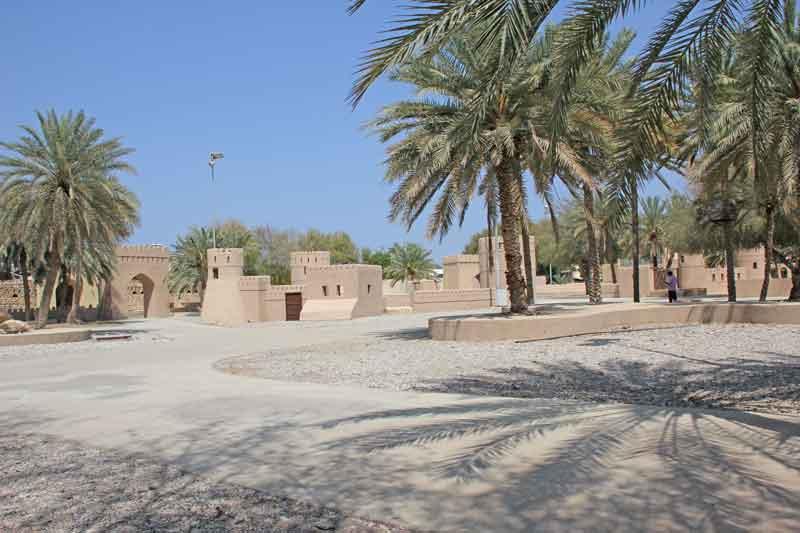 Bild 6 Im Qurum Park in Muscat