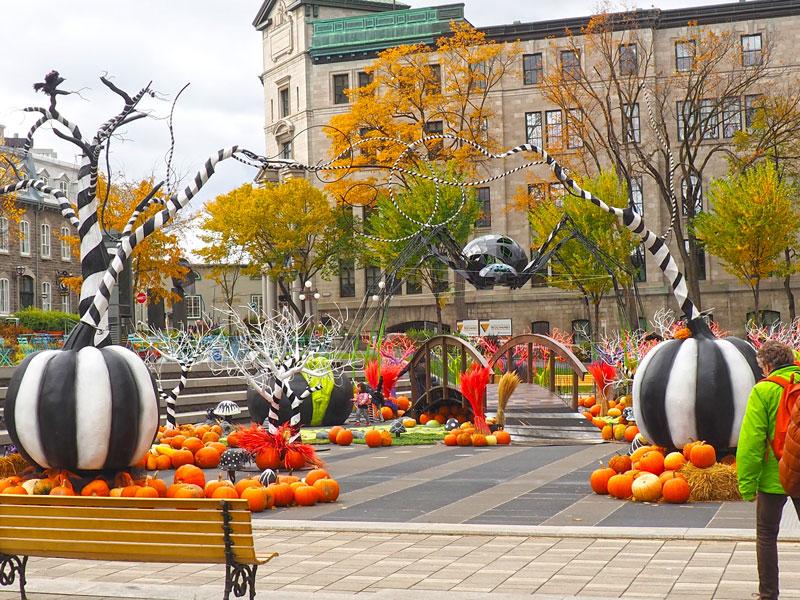 Bild 14 Überall ist geschmückt für Halloween