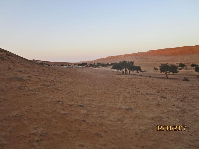 Bild 15 Blick auf die Anlage 1000 nights camp