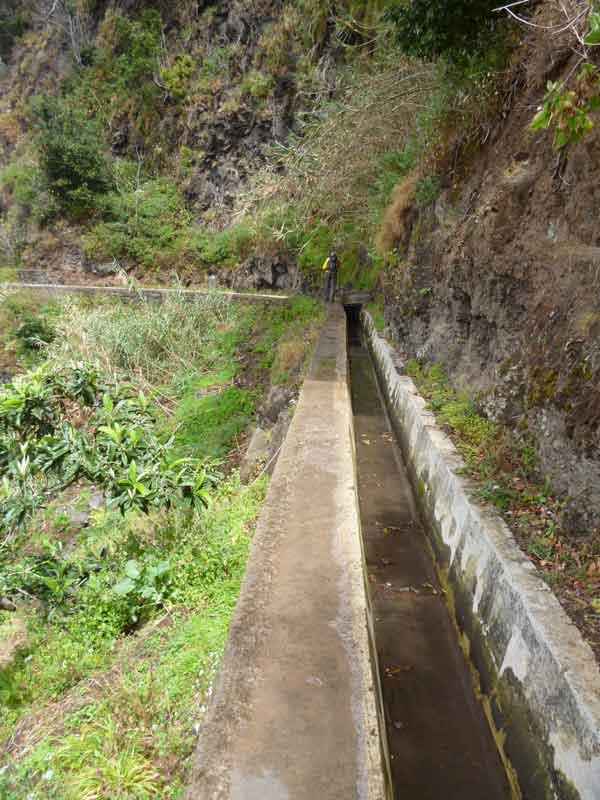 Bild 5 Wanderung auf der Levada Mohino und zurück auf der Levada Nova