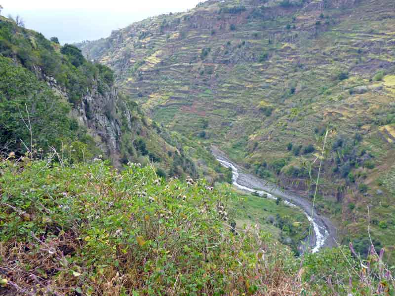 Bild 9 Wanderung auf der Levada Mohino und zurück auf der Levada Nova