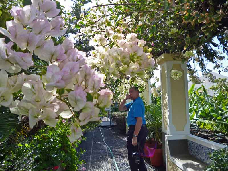 Bild 4 Garten im ursprünglich gebuchten Hotel