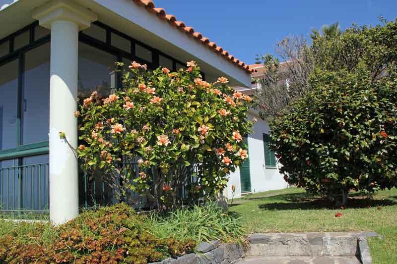 "Bild 5 Unser Bungalow im Hotel ""Jardim Atlantico"""