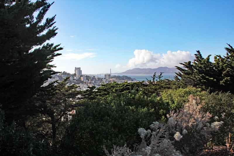 Bild 25 Blick auf SF vom Coit Tower