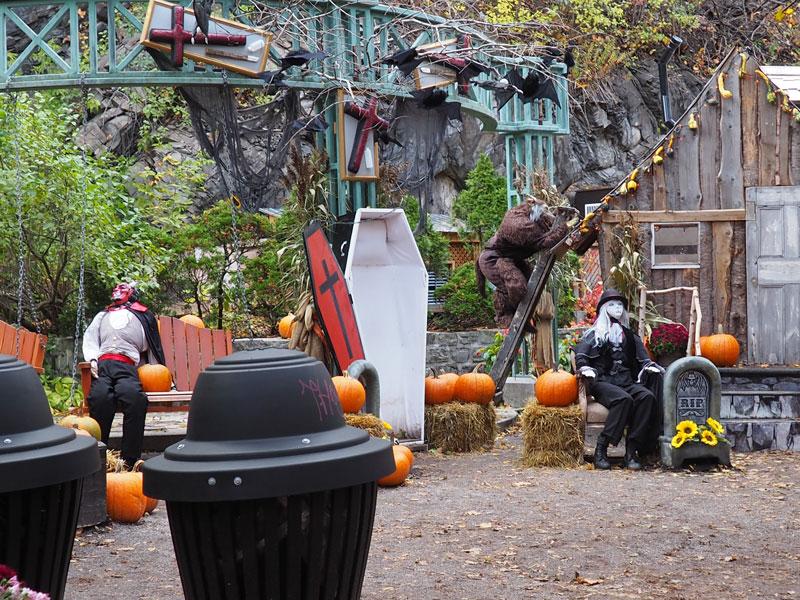 Bild 10 Überall ist geschmückt für Halloween