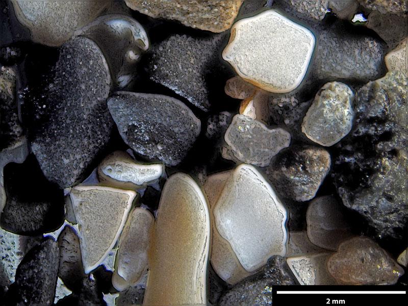 Bild 3 Sand aus der Gaspesie, Kanada Atlantikküste