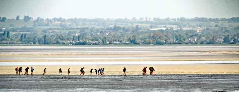 Bild 6 Wattwanderer auf dem Weg zu Mont-Saint-Michel