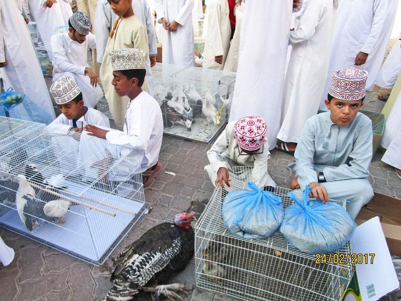 Bild 16 Im Souk in Nizwa verkaufen KInder die kleinen Tiere