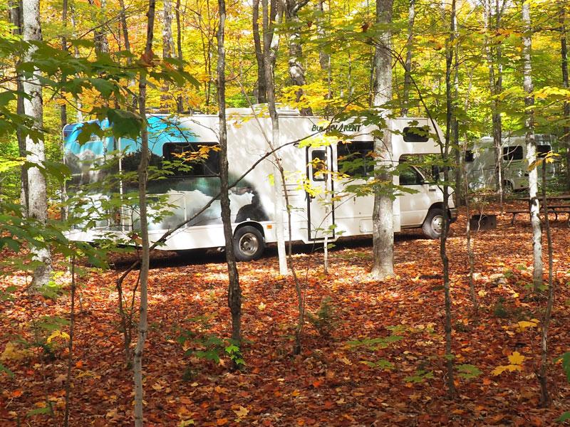 Bild2 Unser Platz 113 auf dem Canisbay Campground
