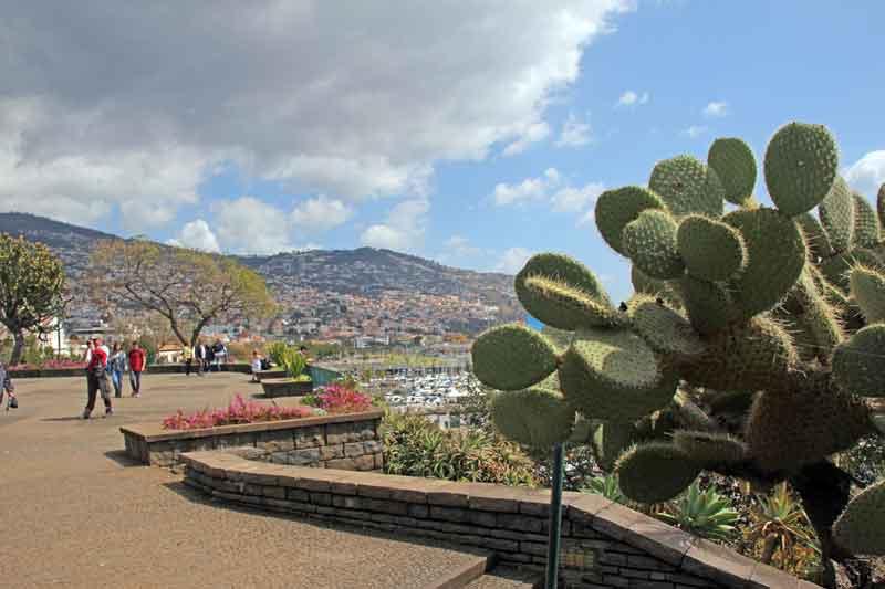 Bild 11 Bummel durch Funchal