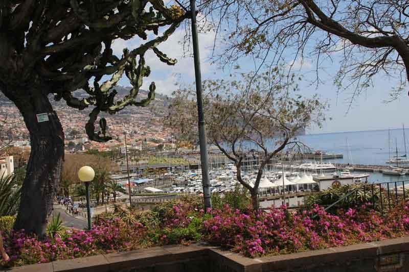 Bild 17 Bummel durch Funchal