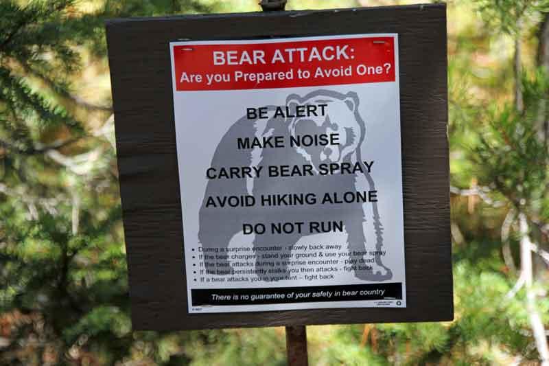 Bild 9 Bärenwarnungen überall