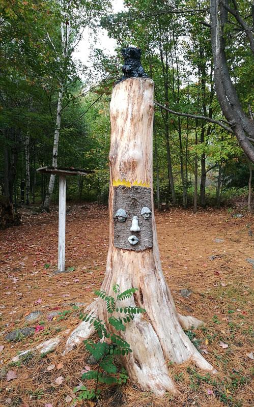 Bild 11 Herbstwald in Ontario
