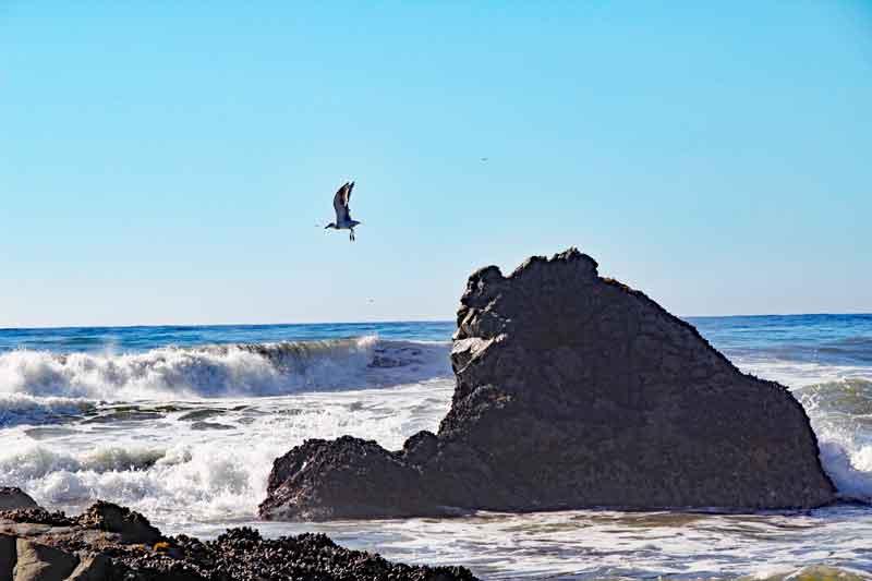 Bild 28 Zwischen den Felsen am Strand