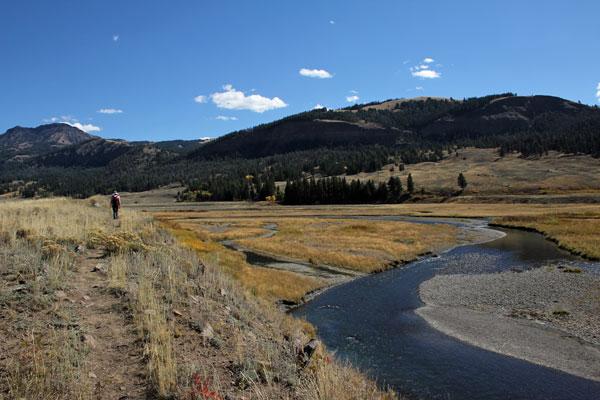 Bild 4 Wanderung immer am Lamar River entlang