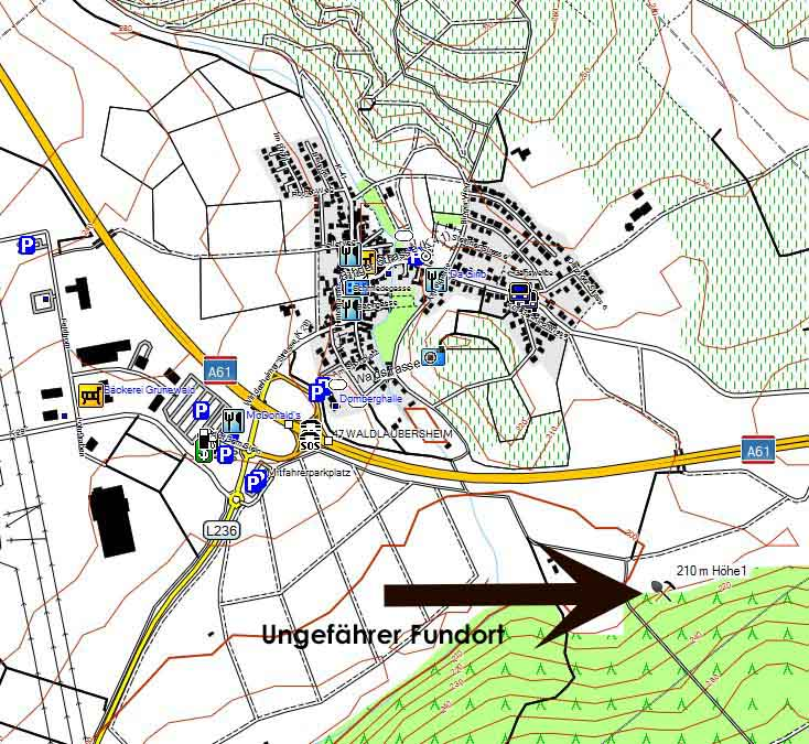 Bild 1 Foraminiferen Fundort Waldlaubersheim