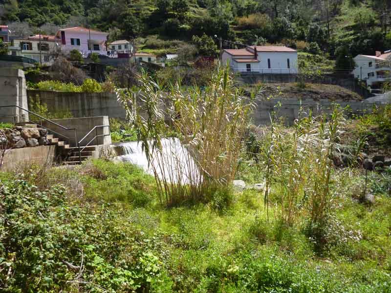 """Bild 7 Blick auf Dorf unterwegs bei Levadawanderung, Start oberhalb von """"Ribeira Brava"""""""
