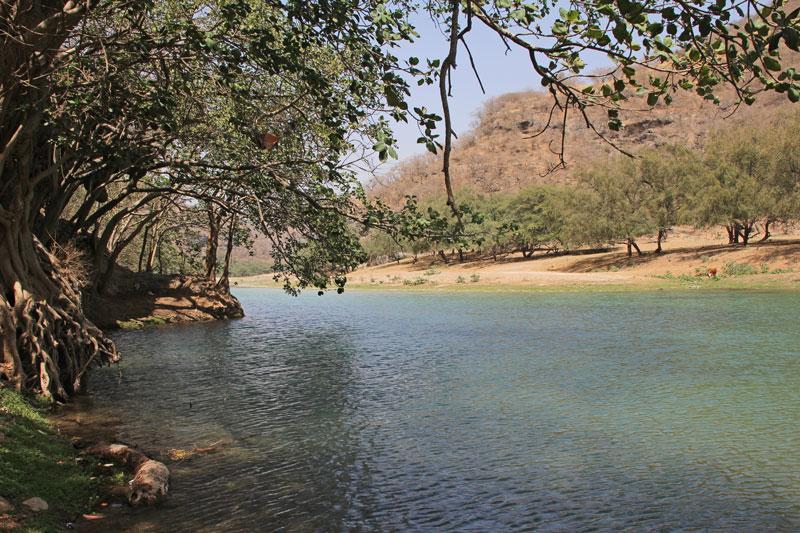 Bild 9 Ein See, der sich im Wadi Darbat gebildet hat