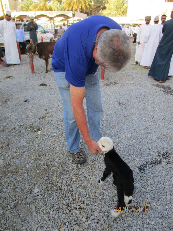 Bild 2 Viehmarkt in Nizwa, Zicklein streicheln kostet nichts
