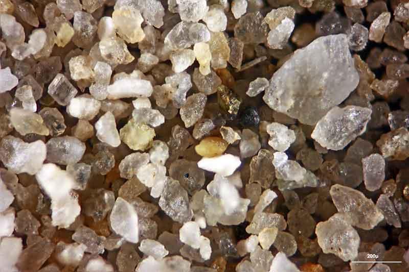 Bild 2 Sand vom Strand Nähe Koper, Slowenien