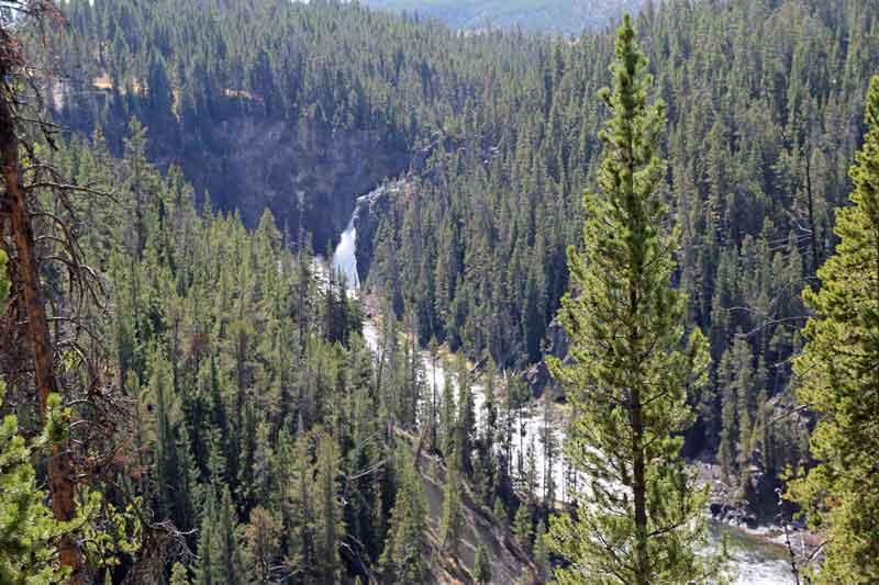 """Bild 11 Yellowstone, am Yellowstone """"Grand Canyon"""""""
