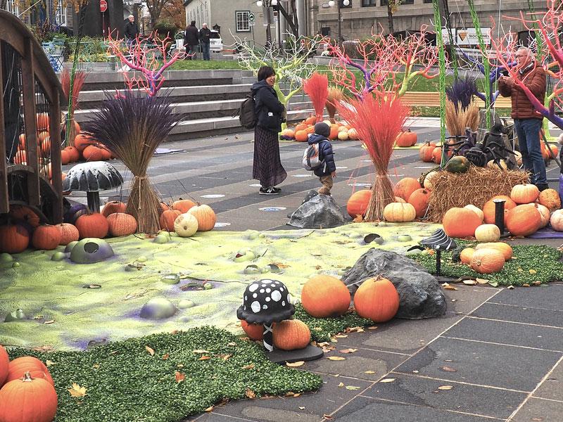 Bild 15 Überall ist geschmückt für Halloween