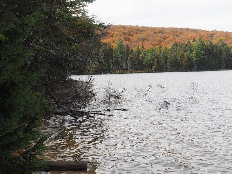 Bild 9 Wanderung zum Canisbay Lake