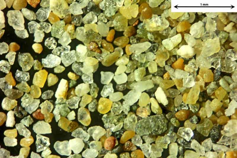 Bild 2 Sand aus Narbonne/Südfrankreich vom Badestrand, Objektiv Zeiss Plan 2,5/o,o8 Auflicht