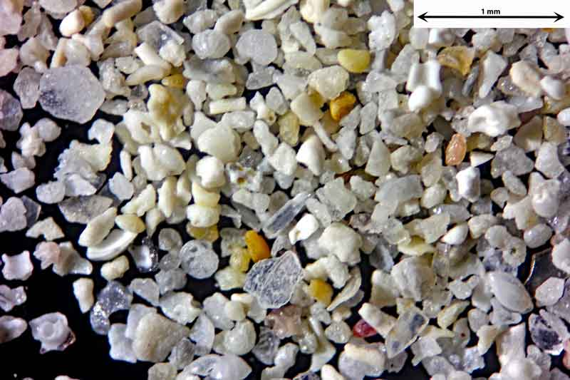 Bild 2 Sand aus Santanyi-Mallorca/Spanien, vom Badestrand Objektiv Zeiss Plan 2,5/o,o8 Auflicht