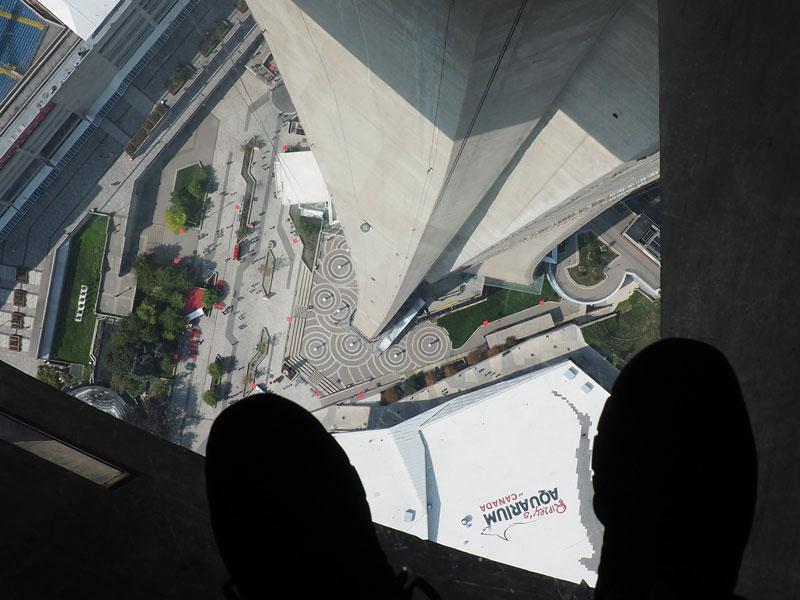 Bild 39 Blick durch den Glasboden auf dem CN Tower
