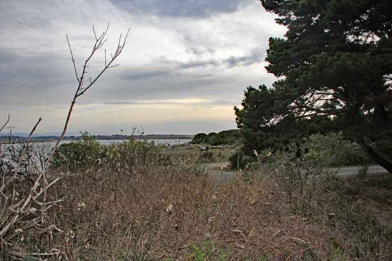 Bild 16 Immer wieder tolle Blicke auf die Küstenlandschaft in Oregon