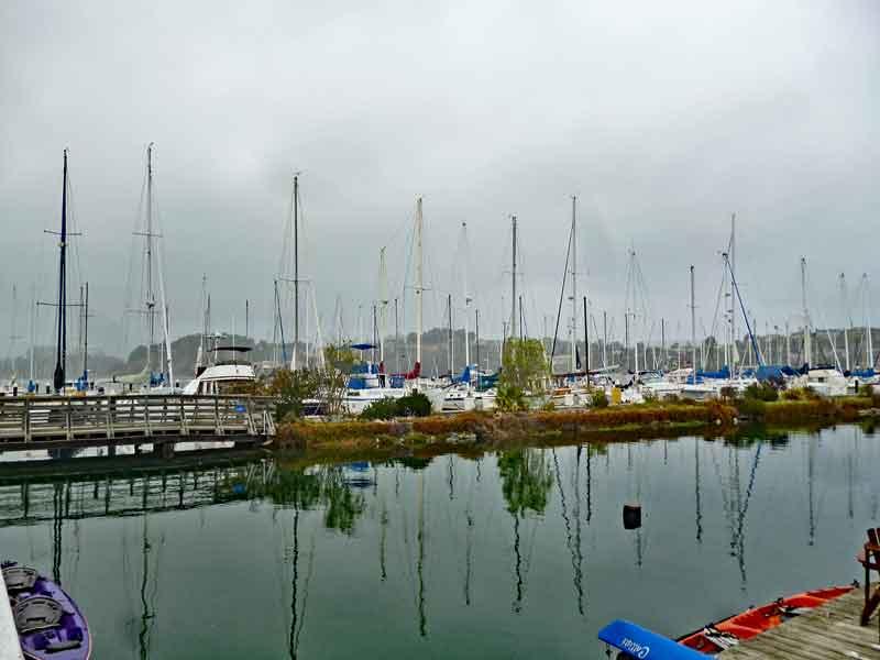 Bild 44 An der Promenade in Sausalito, Blick auf den Bootshafen