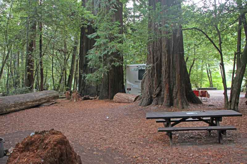 Bild 2 Morgens im Jedediah State Park Campground