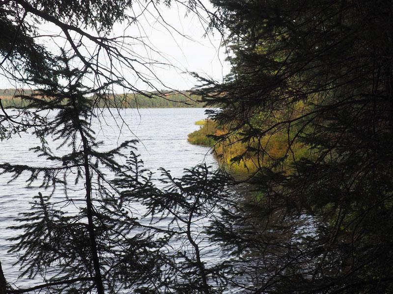 Bild 8 Wanderung zum Canisbay Lake