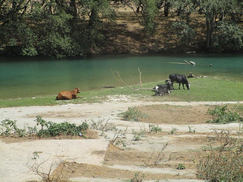 Bild 8 Ein See, der sich im Wadi Darbat gebildet hat