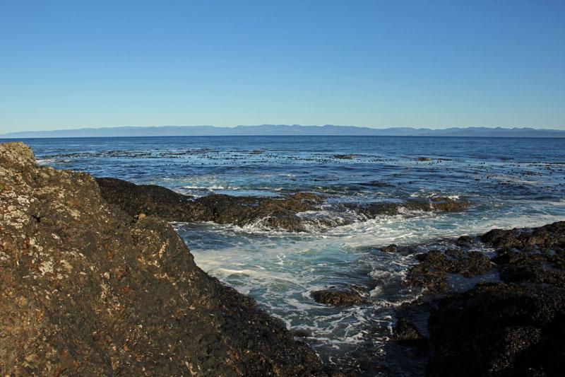 Bild 6 Blick auf die Küste der Olympic Peninsula