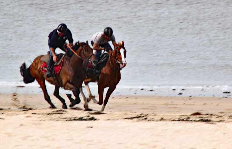 Bild 7 Pferdeausreiten am Strand von Dragey Ronthon
