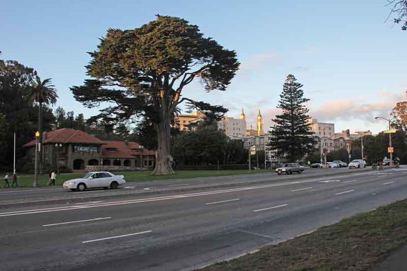 Bild 65 Park an der Haight Street