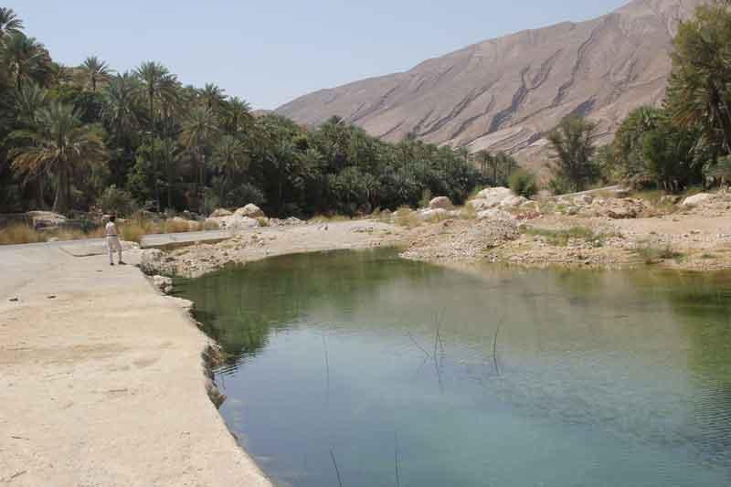Bild 10 Naturpool an der Einfahrt ins Wadi Bani Khalid
