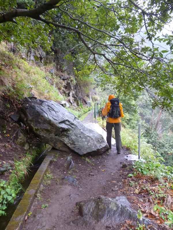 Bild 13 Wanderung auf der Levada Nova und der Levada Mohino