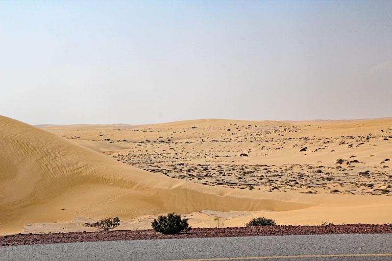 Bild 9 Blick auf die Wüste
