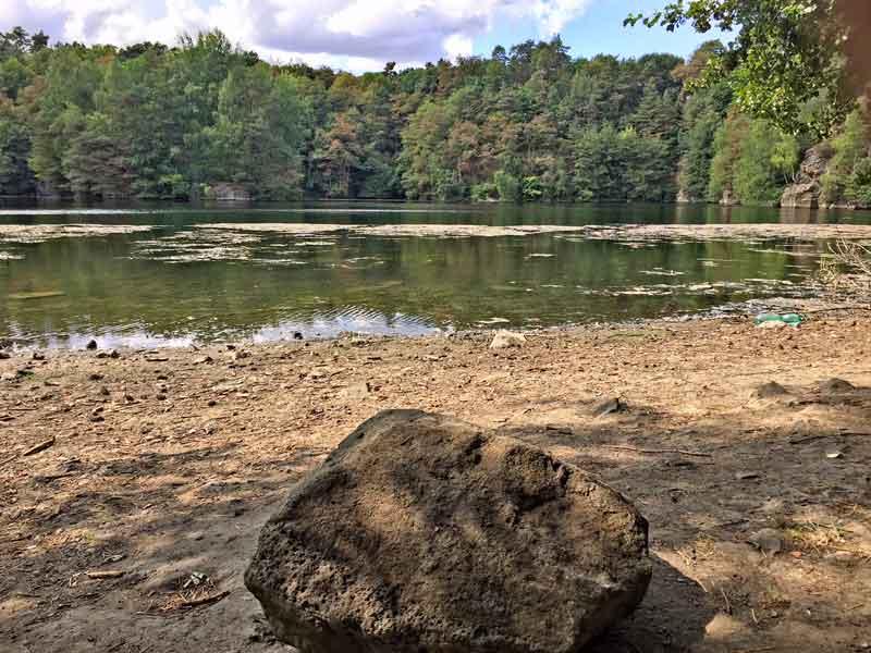 Bild 6 Blick auf den Oberwaldsee im Naturschutzgebiet