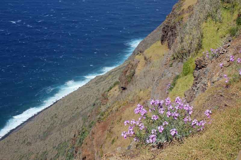 Bild 15 Tolle Ausblicke vom westlichsten Punkt Madeiras auf das Meer